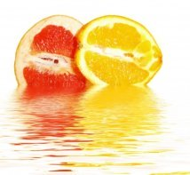grapefruit diet menu