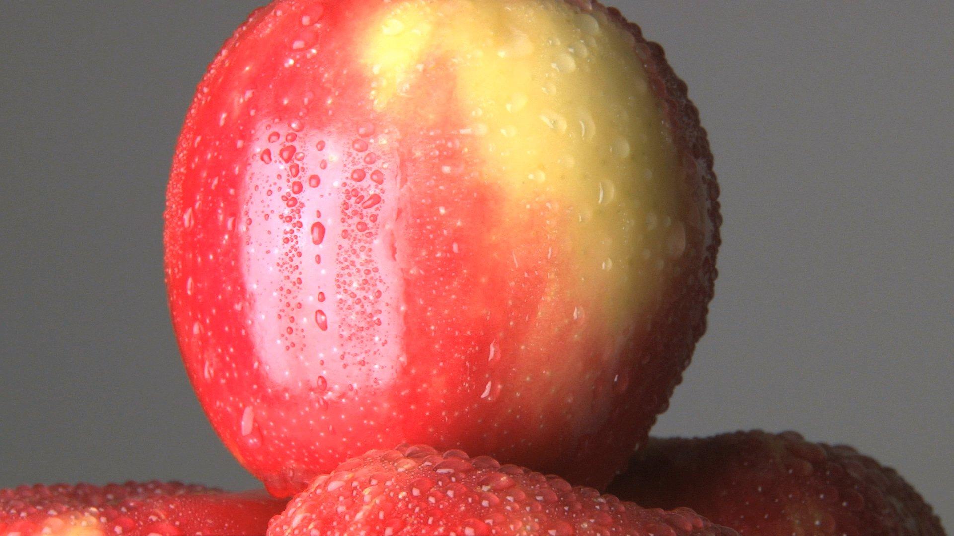 apple diet plan